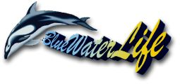 Logo BlueWaterLife Thomas Riedl